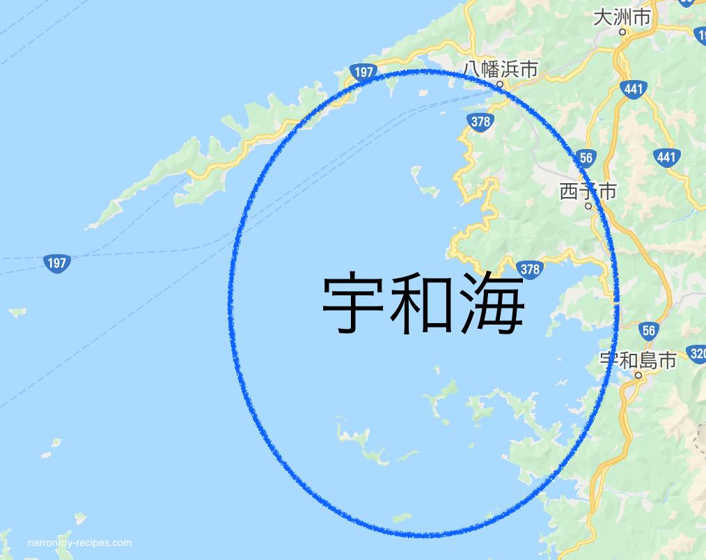 宇和海地図